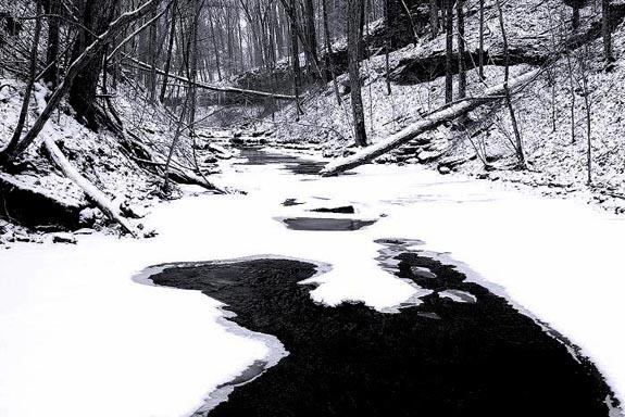 winter-hollow-2.jpg