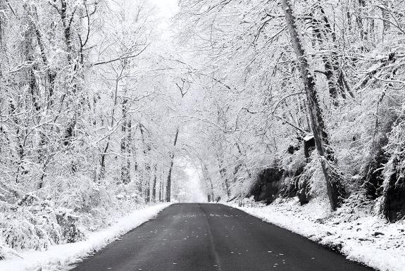 winter 2 2012