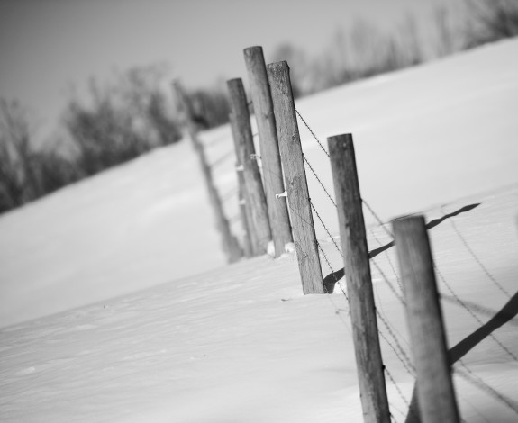 winter storm 2 2014